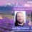 """Jim Charles on Radio """"Enlightenment Evolution Hour"""" with Rob Gauthier. 9:00 PM EDT"""